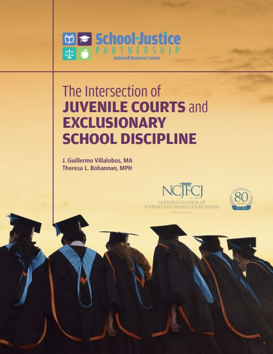 Juvenile Courts cover