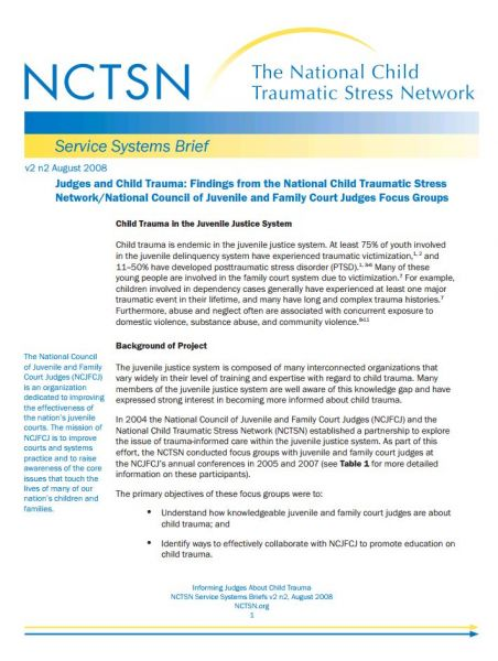 Judges and Child Trauma: Findings from the National Child Traumatic Stress Network/National Council of Juvenile and Family Court Judges Focus Groups